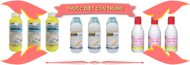 ban thuoc diet con trung 640 pink