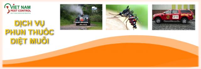 Dịch vụ phun muỗi giá rẻ
